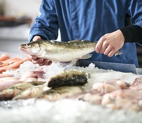 URGENT - La belle poissonnerie de Sainte-Luce-sur-Loire (44) cherche son poissonnier(e)