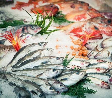 Recherche reprise de poissonnerie en 44, 85, 56, 35, 22 et métropole 59